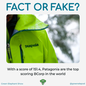 Patagonia the best BCorp