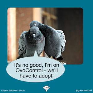 Planned Pigeonhood