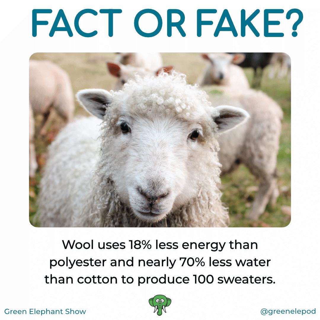 Wooly water saving