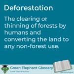 Deforestation definition