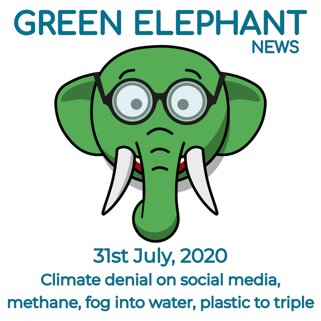 Green Elephant News 31st July 2020