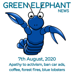 Green Elephant Sustainability News 6th August 2020