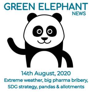 Green Elephant Sustainability News 14th August 2020