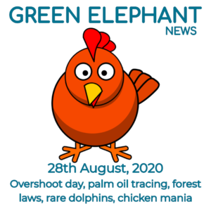 Green Elephant Sustainability News 28th August 2020