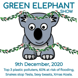 Green Elephant Show No 26 covering the latest sustainability news