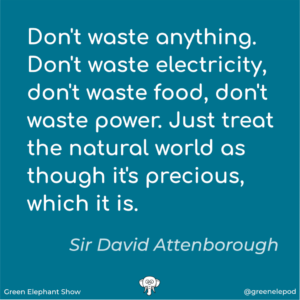 Just Don't Waste David Attenborough Quote