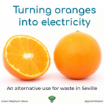 Electricity from Oranges
