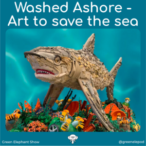 Art to save the sea