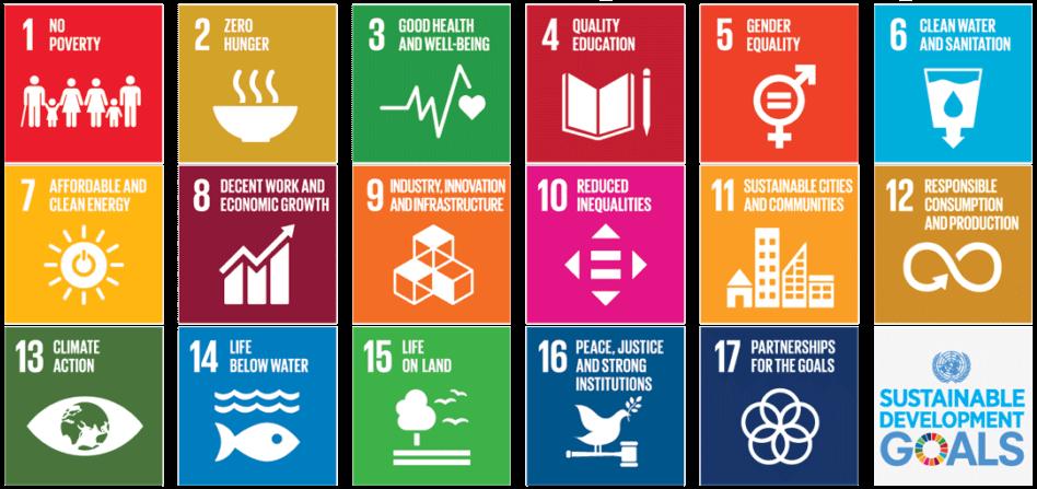 All 17 UN Sustainable Development goals